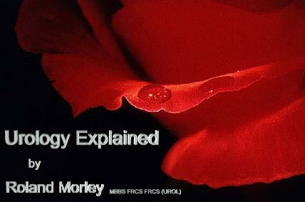 Urology Explained by Roland Morley